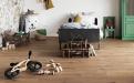 Wohngesundes Gestalten von Lieblingsplätzen – ob im eigenen Zuhause oder anderswo – lässt sich mit den Bestseller-Dekoren der wineo 1200 umsetzen.